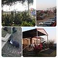 青松農場view3.jpg