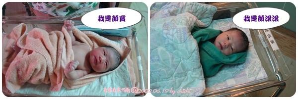20090619-兩姊妹01.jpg