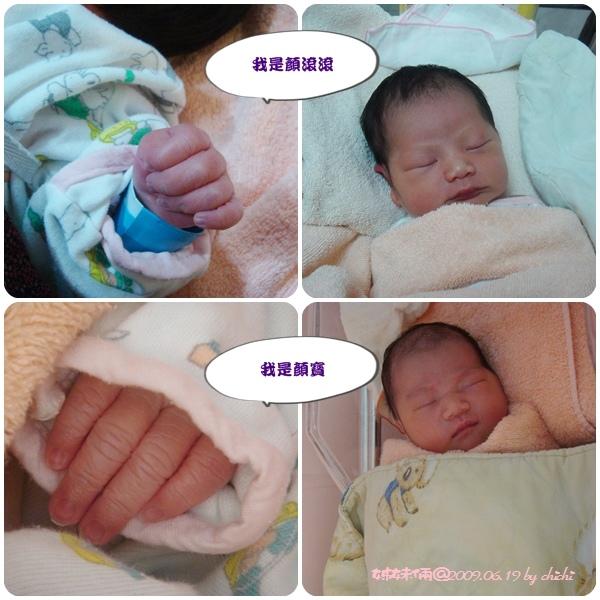 20090619-兩姊妹02.jpg
