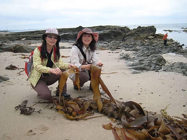 2010澳洲塔斯馬尼亞 036.jpg