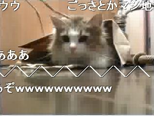 0127生放-MOKA.jpg