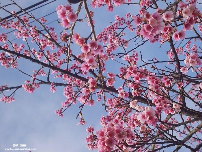 nEO_IMG_台北4.jpg