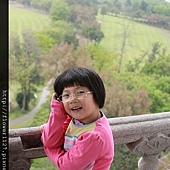 IMG_9617 (800x533)
