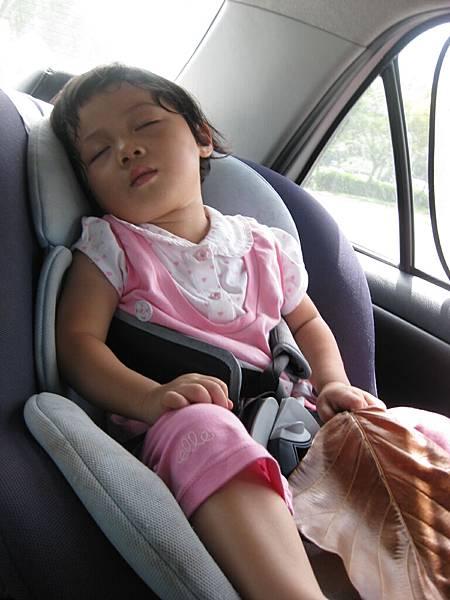 上車就睡著  -.-