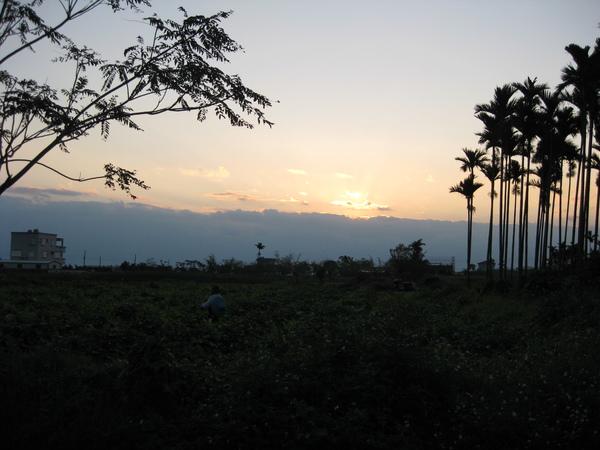 日出(看起來像黃昏 -.-)
