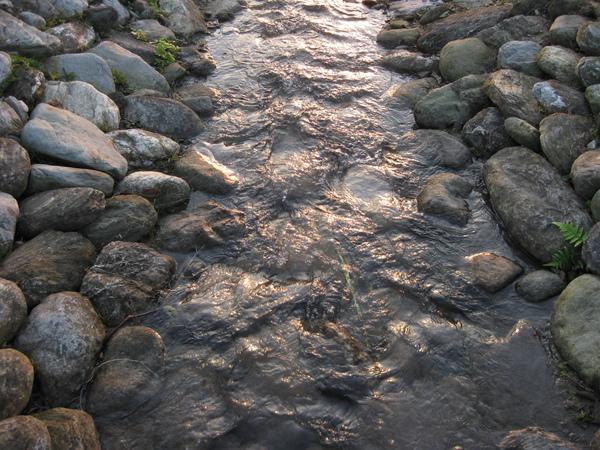 初英公園裡的溪