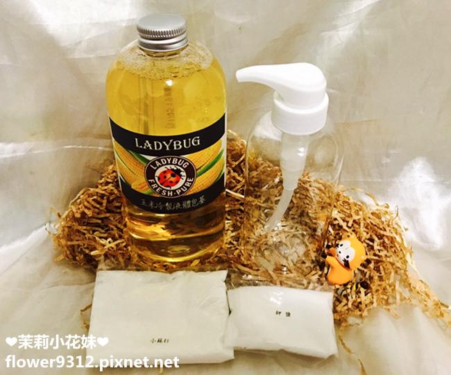 LADYBUG 天然液體皂基 DIY (9).jpg