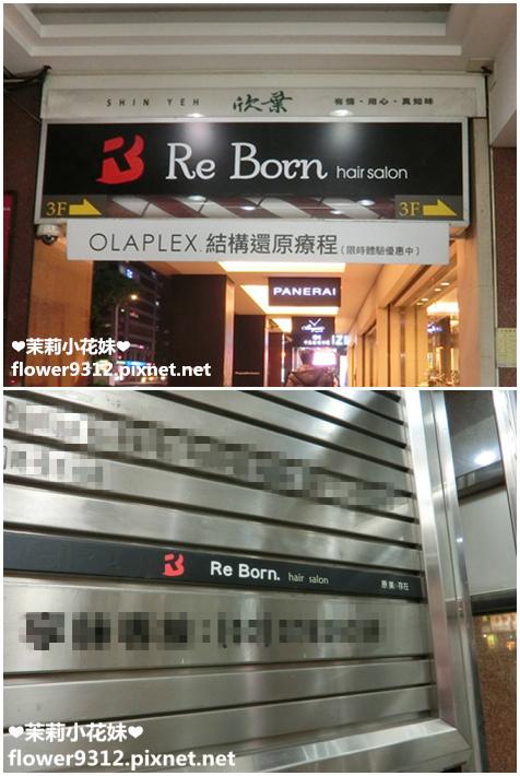 ReBorn (1).jpg