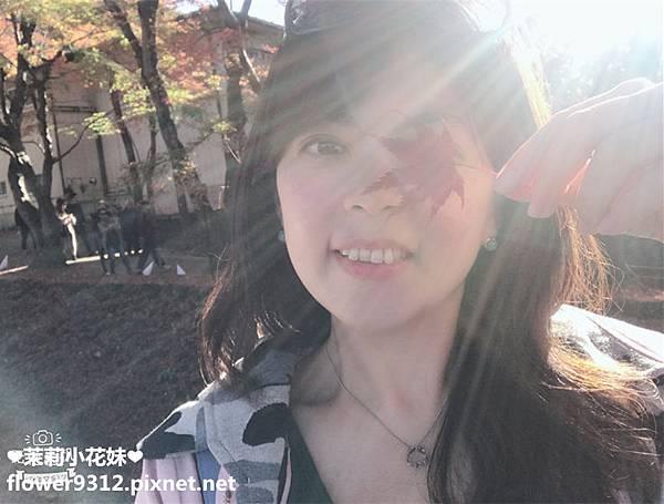 M%26;T嚴選 天然水晶 天然石 (13).JPG