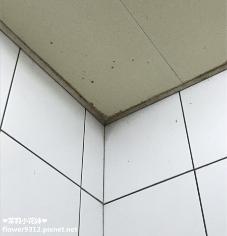 原力清潔室 (3).JPG