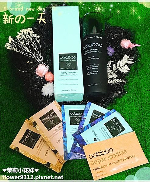OOLABOO歐拉布髮品 海藻24急救修護乳+洗護體驗組 (9).jpg