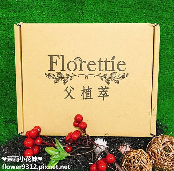 父植萃 Florettie (3).JPG
