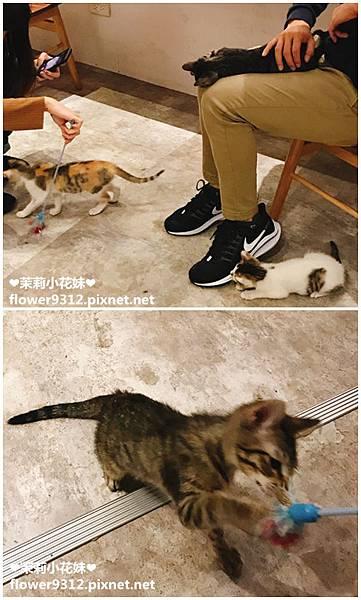 Take Out Burger&Cafe 手工漢堡 (9).JPG