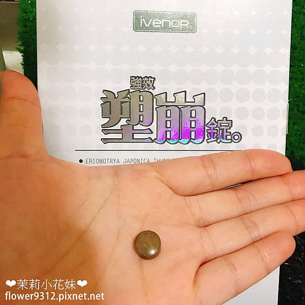 IVENOR 日夜塑崩爆燃代謝組 24hr代謝不間斷 (6).JPG