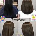 看膩長髮~剪一波~自然棕色系配上今年必剪的中長髮型~