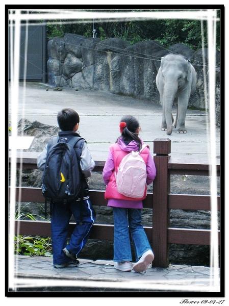 動物園背影.jpg