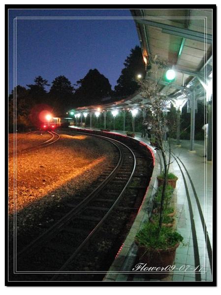 阿里山火車進入.jpg