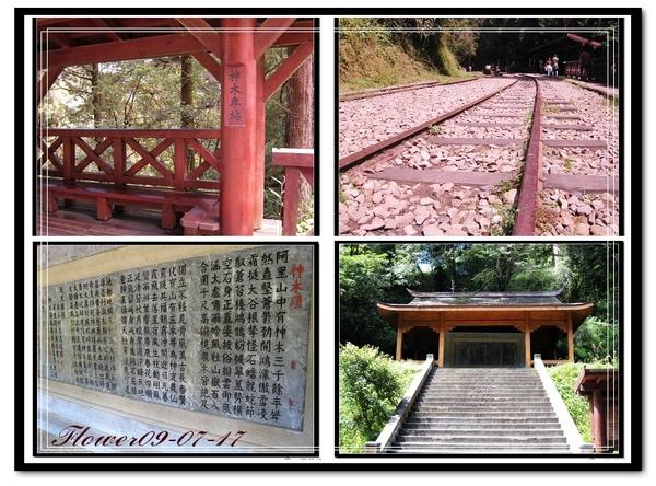 阿里山神木車站.jpg