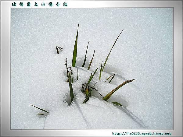 tataka-snow29