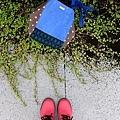 繽紛拼色側背包|藍莓摩卡。