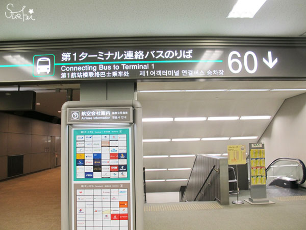 IMG_6905
