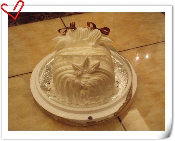 cake-pipi.jpg