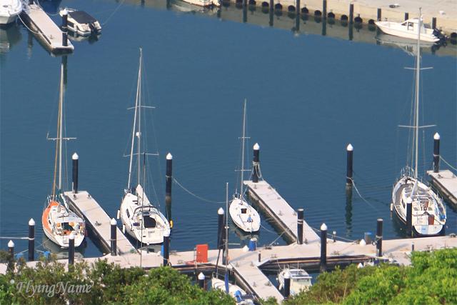 碧砂港帆船