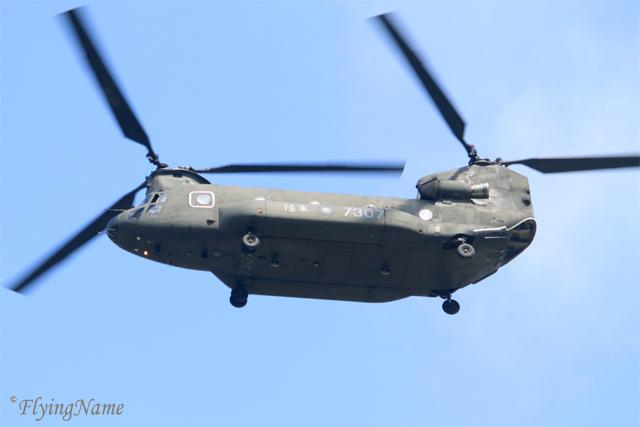 CH-47SD (7307)