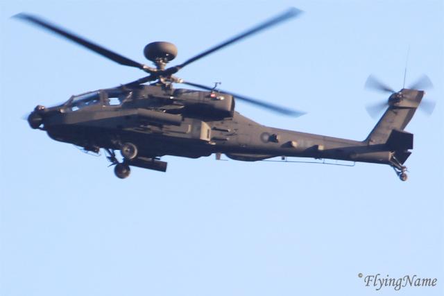 AH-64E (828)