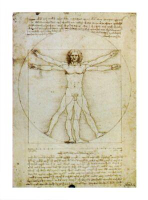 paint-michelangelo-schema-delle-proporzioni-del-corpo-umano-7700179