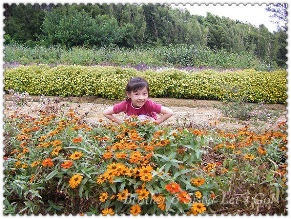 青林農場 (10).jpg