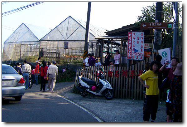 110227內湖草莓季 (15).jpg