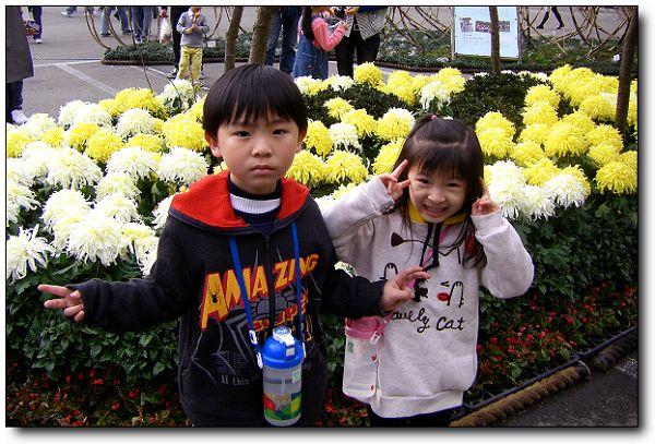 2011陽明山花季 (3).jpg
