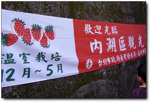 110227內湖草莓季(1).jpg