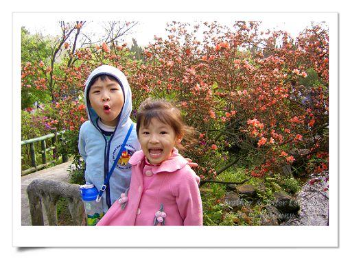 陽明山公園2 (3).jpg