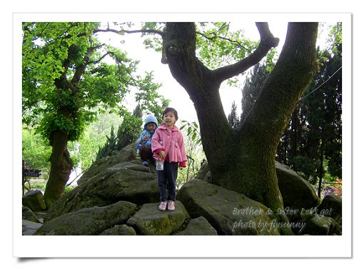 陽明山公園2 (6).jpg
