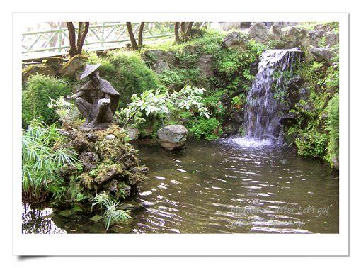 陽明山公園2 (10).jpg