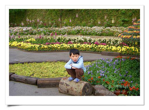 陽明山公園2 (17).jpg