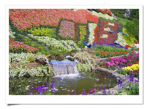 陽明山公園2 (20).jpg