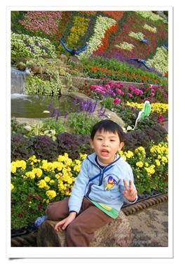 陽明山公園2 (26).jpg