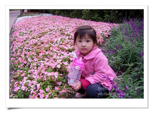 陽明山公園2 (31).jpg