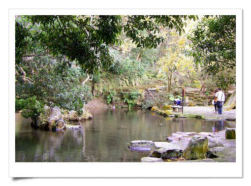 陽明山公園 (5).jpg