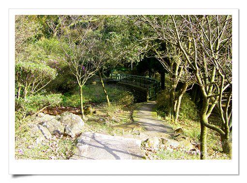 陽明山公園 (8).jpg