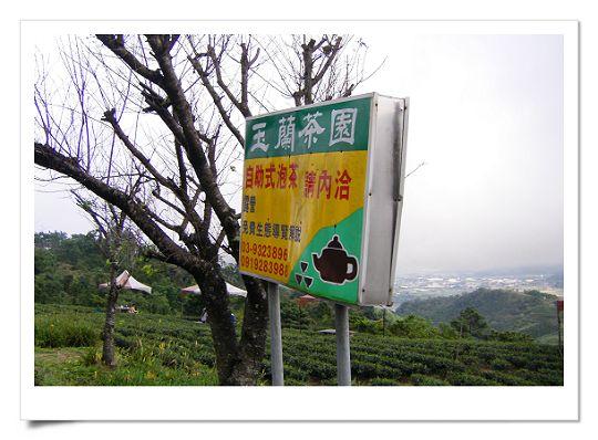 玉蘭茶園(1).jpg