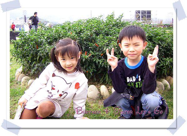 20110403逛花博 (7).jpg
