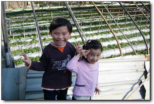 110227內湖草莓季 (19).jpg