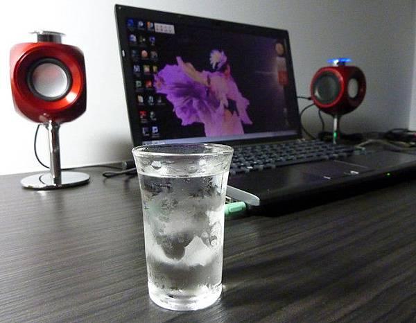 灰雁伏特加-凍飲