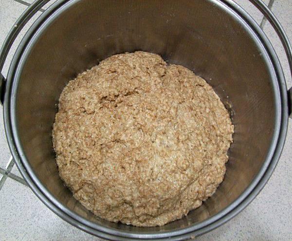 葡萄種天然酵母-全麥麵種02