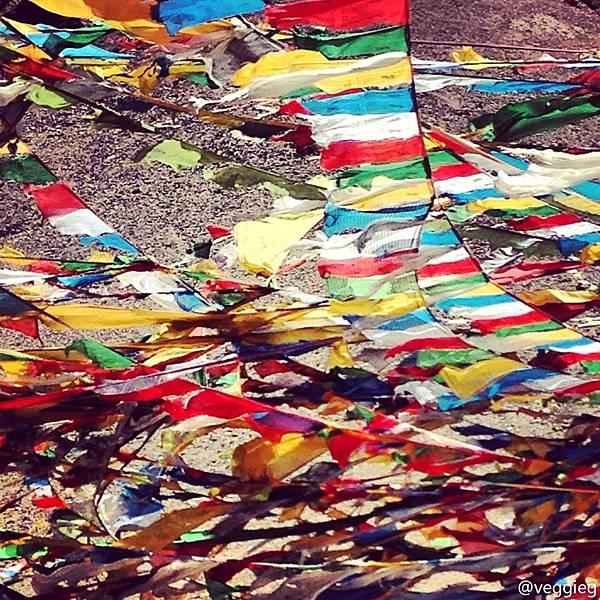 西藏好風光-4