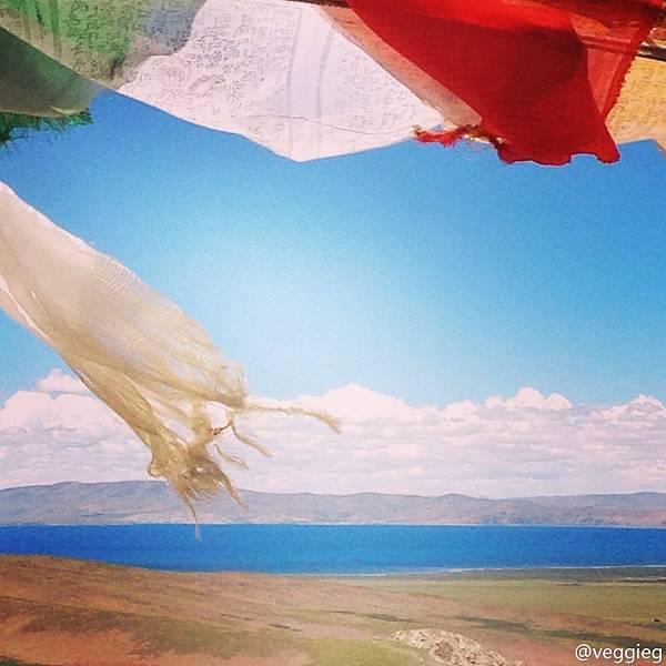 西藏好風光-3